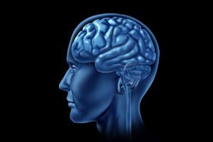 Auto Injury Treatment FL Complete Care Skull